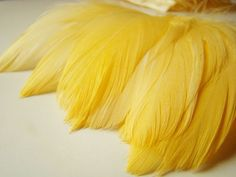 rit dye instructions cheesecloth
